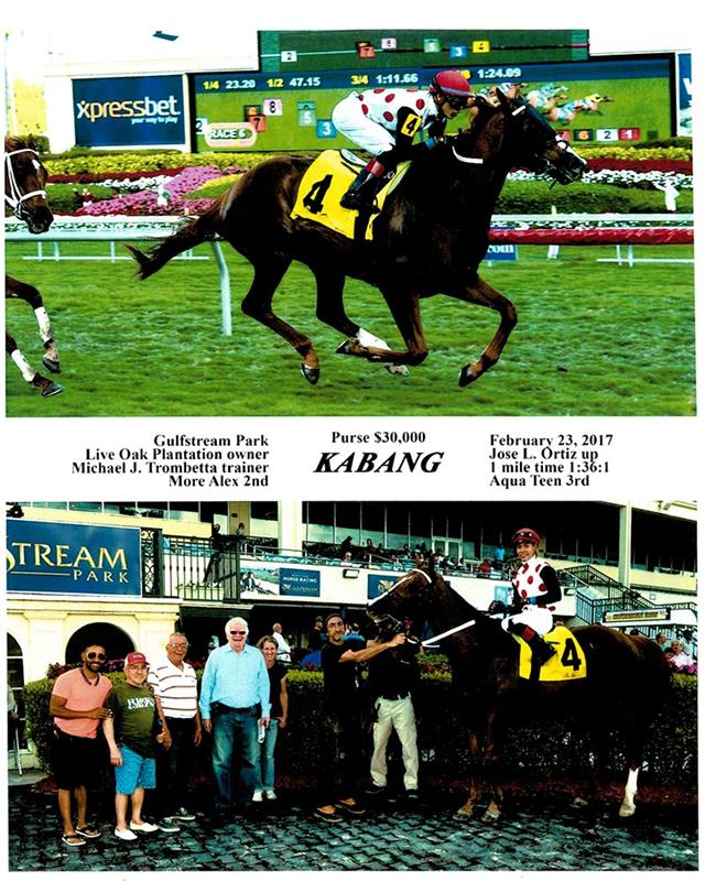 Racing - Live Oak Stud Ocala, Florida - A Full Service